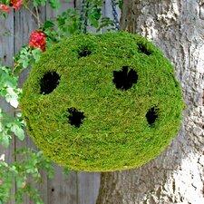 Woven Ball Planter