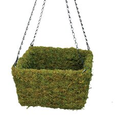Square Moss Hanging Basket (Set of 3)
