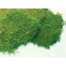 <strong>SuperMoss™</strong> 32 oz. Fresh Sheet Moss
