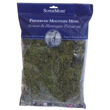 Sphagnum Fine Preserved Mountain Moss
