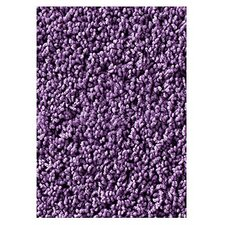 Soft Solids KIDply Lilac Kids Rug