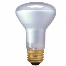 45W120-Volt (2800K) Halogen Light Bulb