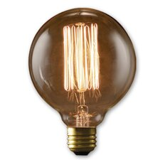 Nostalgic Edison 40W (2000K) Incandescent Light Bulb (Set of 2)
