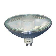 100W 120-Volt Halogen Light Bulb (Set of 2)