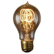 Nostalgic Edison 25W 120-Volt (2700K) Incandescent Light Bulb