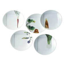 "Kyoka Syunsai 6"" Plate Set (Set of 5)"