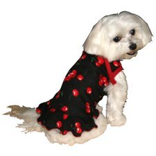 Big Dog Dress in Black Cherry