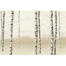 Modern Murals Birch Trees Mural in Neutral