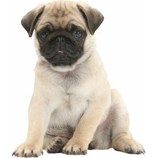 <strong>4 Walls</strong> Puppy Love Pug Wall Decal
