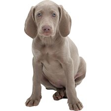 Puppy Love Weimaraner Wall Decal
