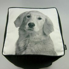 <strong>lava</strong> Golden Retriever Cube Ottoman