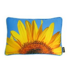 Sunflower Sky Pillow