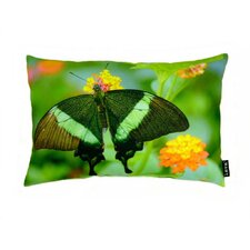 Butterfly on Bush Polyester Pillow