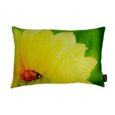 Butterfly on Bloom Polyester Pillow