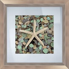 Sea Glass Starfish Framed Photographic Print