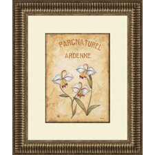 <strong>Pro Tour Memorabilia</strong> Parcnaturel B Framed Art