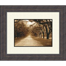 <strong>Pro Tour Memorabilia</strong> Savannah Oaks B Framed Art