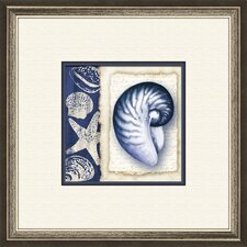 Blue Shell B Framed Graphic Art