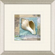 Restful Shell A Framed Graphic Art