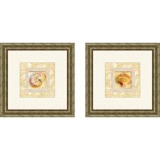 Bath Antique Shell 2 Piece Framed Graphic Art Set