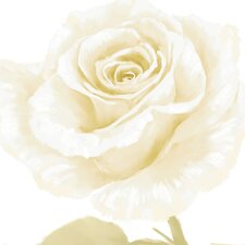 White Rose Wall Art (Set of 2)