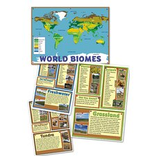 World Biomes Bb Set (Set of 33)