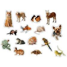 Pets Photographic