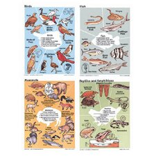 Poster Set Animals Vertebrates