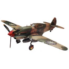 1:48 P-40B Tiger Shark Airplane