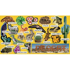 Desert Plants & Animals Mini Bb Set