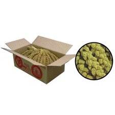 <strong>F.M. Browns Wildbird</strong> Millet Spray Bird Treat - 5 lbs