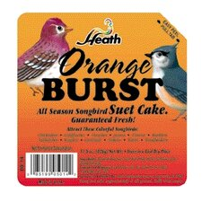 Orange Burst Wild Bird Suet Cake
