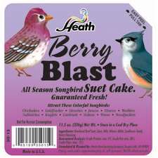 <strong>Heath Mfg Co</strong> Berry Blast Wild Bird Suet Cake