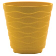 Windsor Planter (Set of 12)