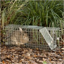 Medium Collapsible 1-Door Live Animal Trap