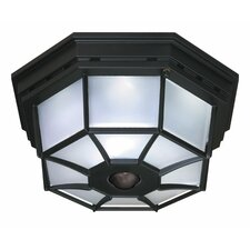 4 Light Octagonal Flush Mount with Motion Sensor