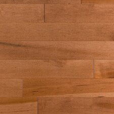 "Stained Semi-Gloss 4-1/4"" Solid Maple Flooring in Copper/Natural"