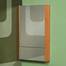 "Eastridge 21.75"" x 37"" Surface Mount Medicine Cabinet"