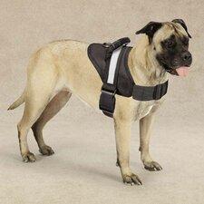 Excursion Pet Harness