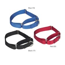 Nylon Martingale Dog Collar