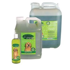 Green Tea and Mint Pet Shampoo