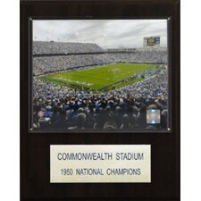 "<strong>C & I Collectibles</strong> NCAA Football 12"" x 15"" Stadium Plaque"