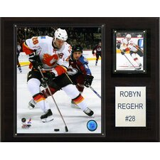 NHL Player Framed Memorabilia Plaque