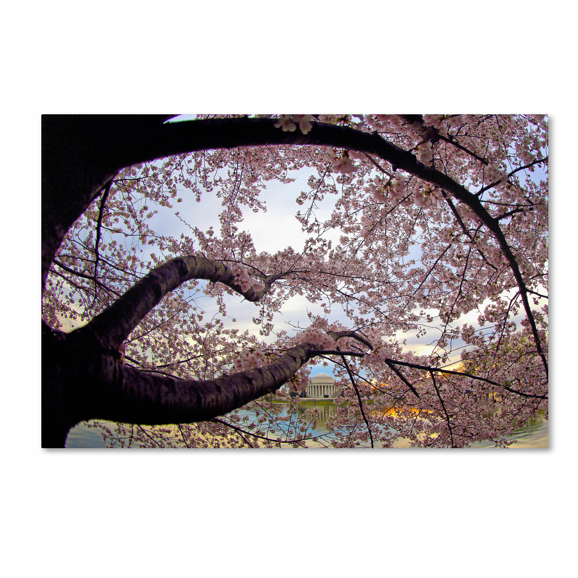 cherry blossom theme bedding and bedroom decor ask home