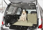 Pet Seat Cover Buying Guide