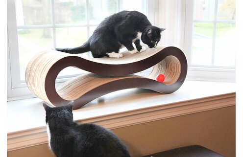 Tabby Takeover: Cat Trees