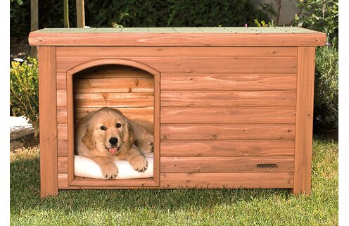 Pup Picks: Dog Houses, Beds & More