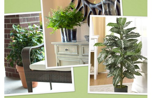 Forever Green: Faux Plants