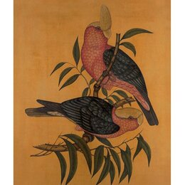 Vintage Aviary Artwork I