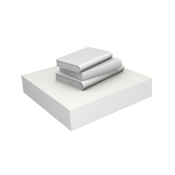 DwellStudio White Floating Small Shelf